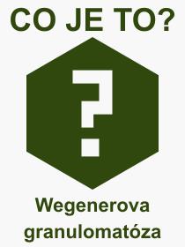 Pojem, výraz, heslo, co je to Wegenerova granulomatóza?